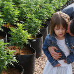 R.I.P. Charlotte Figi, the brave little girl who inspired the Charlotte's Web CBD strain, has died from coronavirus [Sad]