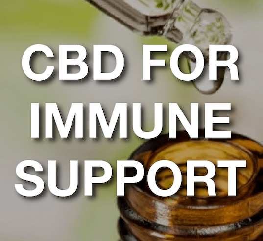 CBD For Immune Support: Protecting Seniors Through Lab Tested CBD